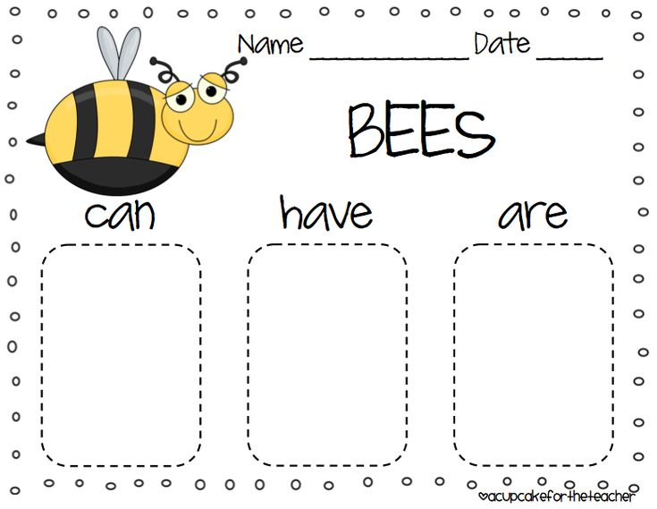"Four insect ""can-have-are"" charts. Free download // acupcakefortheteacher.blogspot.com"