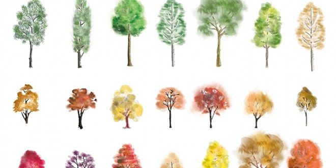 A huge set of colourtrees in photoshop finished in different artistic style, showing both summer an...