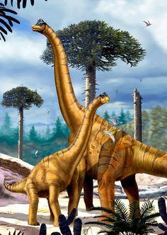 Картинки динозавров разных видов