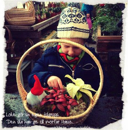 Barnens Trädgård | Tyresö Handelsträdgård
