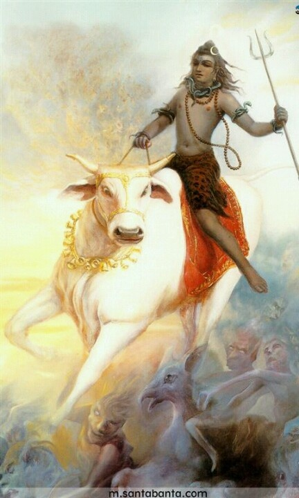 Lord SHIVA. The cow typically represents the divine mother, shiva the christic force with his trident to slay all the negative forces (thoughts, emotions, etc.) inside of us. His utilization of the serpentine energy is also a great assistance.