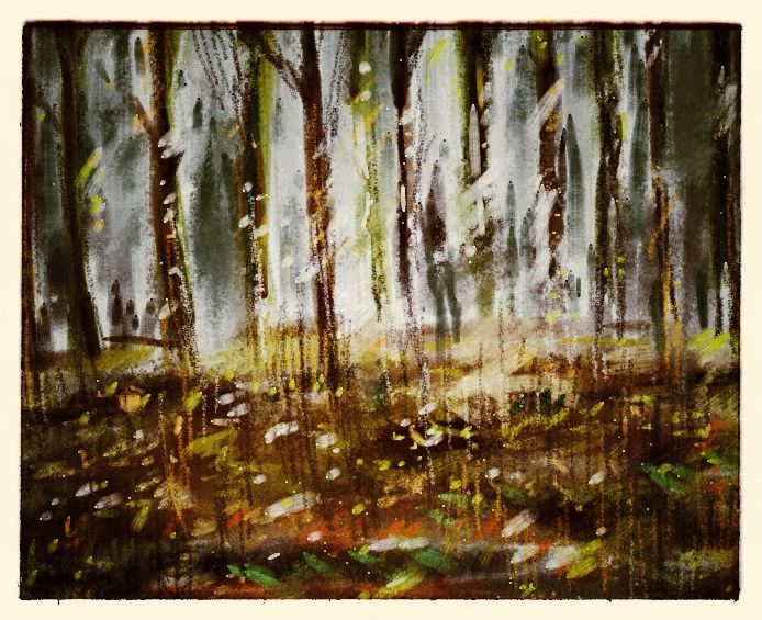 iPad drawing in the woods