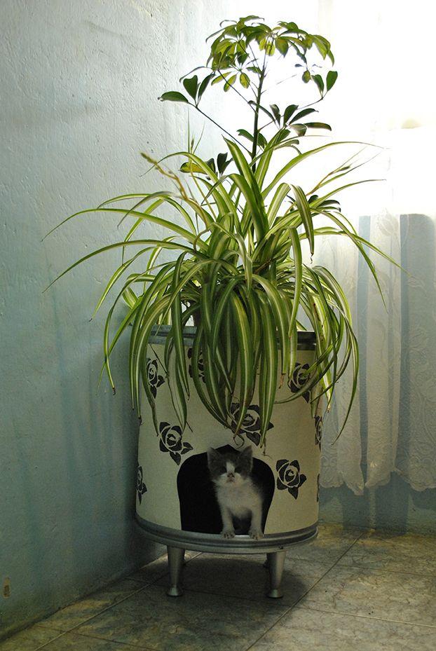 Se trata de un objeto decorativo para las plantas con maceta que además funciona como albergue de nuestra mascota. Está hecho con materiales reciclados y tiene patas metálicas con altura regulable.