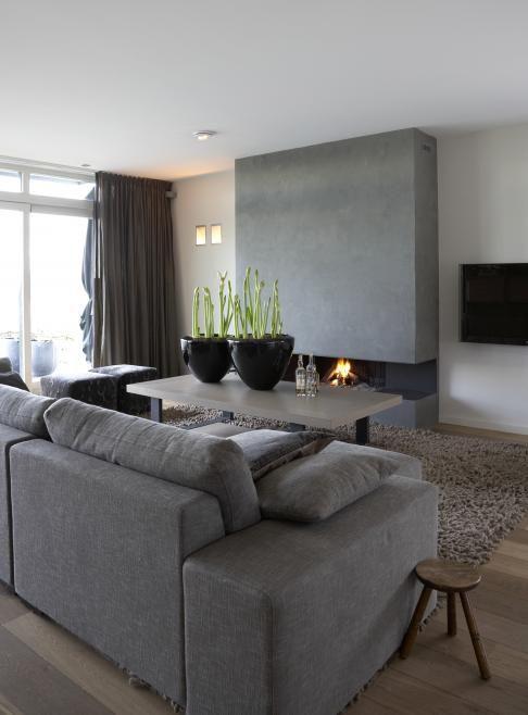 Moderne woonkamer in grijstinten