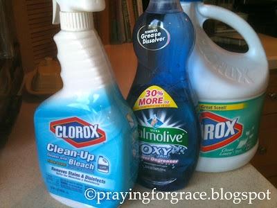 homemade clorox clean up 1 4 cup bleach 1 t dish detergent not dishwasher detergent warm. Black Bedroom Furniture Sets. Home Design Ideas