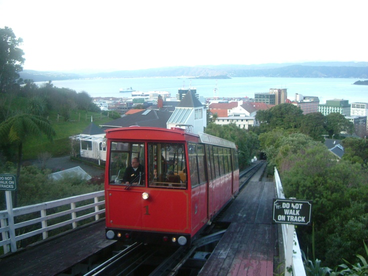 #GreatFoodRace The Tram Wellington, NZ | courtesy of Alicia Beech