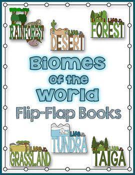 Biomes Essays