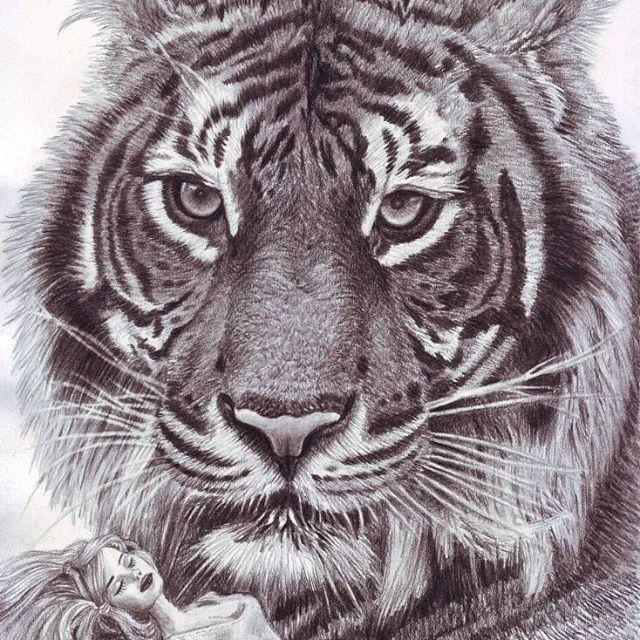 'Tiger's Toy' eBook & Video Tutorial Drawings www.veri-art.com  https://www.instagram.com/veriapriyatno/