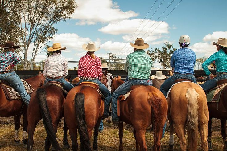 Kilkivan's campdrafting champions - ABC Sunshine & Cooloola Coasts Qld - Australian Broadcasting Corporation