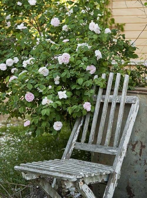 Shabby worn chair..adorned with roses