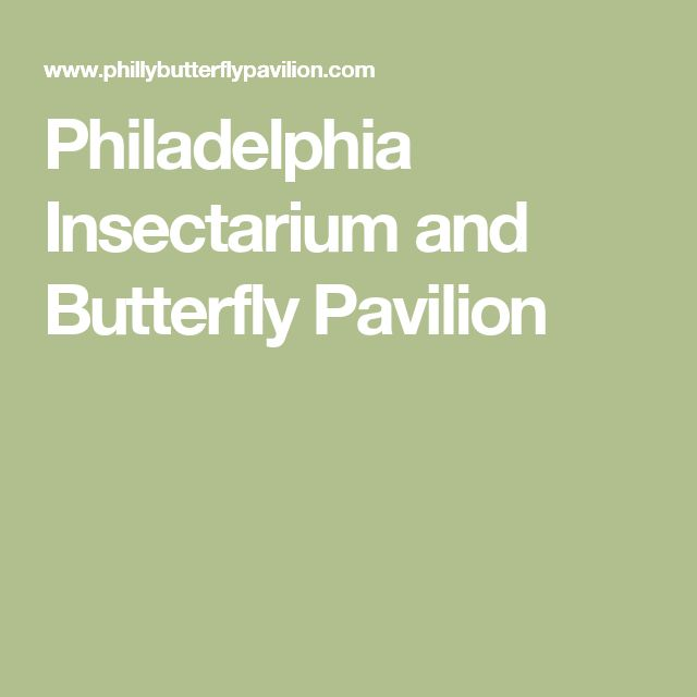 Philadelphia Insectarium and Butterfly Pavilion