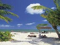 Florida Vacation, Tourism, Travel & Entertainment Information | VISITFLORIDA.com