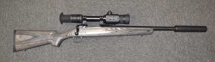 .300 Blackout with Photon XT Day/Night Vison and SDN-6 Suppressor. Just the thing for for whacjking pigs or coyotes.