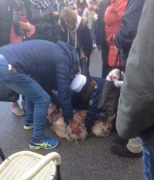 Donna colta da malore al porto di Anzio, forse per la folla presente. Soccorsa, ora si sta riprendendo.