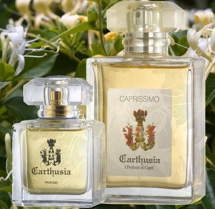 #cartusia #caprissimo #capri #rosinaperfumery #athens