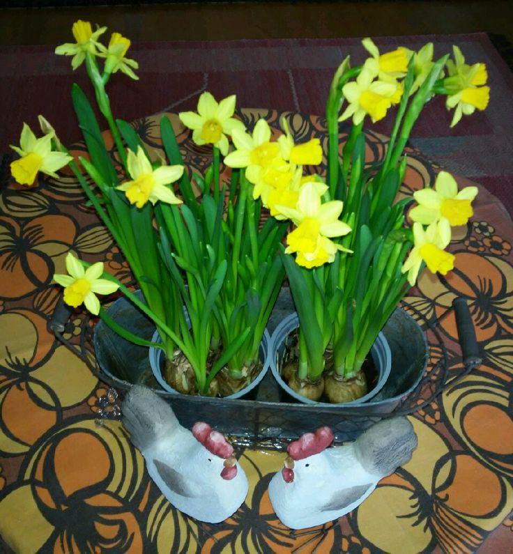 Vietetään oikein rauhaisaa ja nautinnollista pääsiäistä!