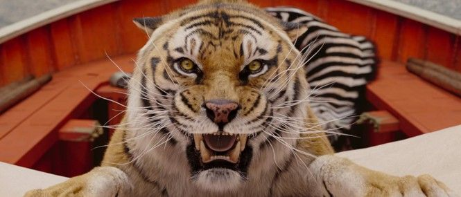 toger pics from life of pie | Life of Pi: a tiger's tale