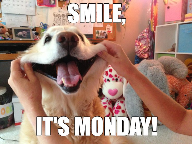 The long weekend is over, but this Monday, make sure to smile! Plus, cash back online! http://www.fatwallet.com/cash-back-shopping/