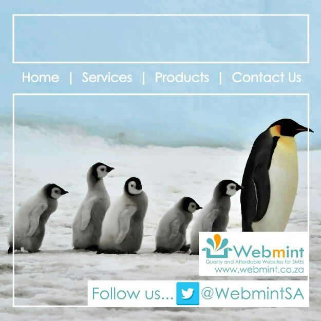 We are also on Twitter.... Follow us @WebmintSA and stay connected #WebmintSA