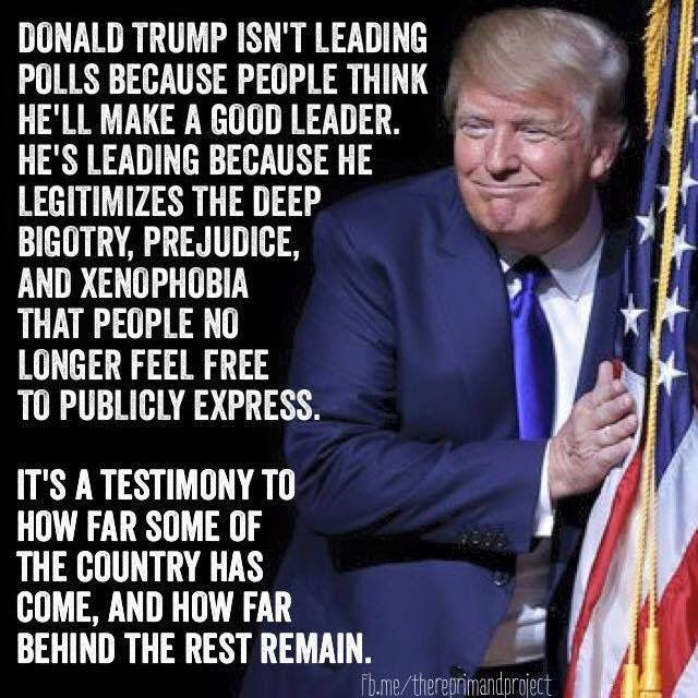 39 best Idiot Donald Trump images on Pinterest | Donald ...