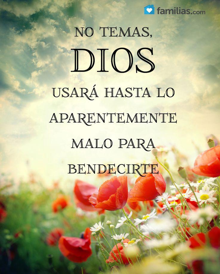 """""""Y sabemos que a los que aman a Dios, todas las cosas les ayudan a bien, esto es, a los que conforme a su propósito son llamados""""..Romanos 8:28 ღ✟"""