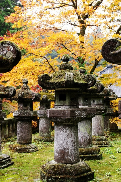 Stone lanterns, Tochigi Prefecture, Japan: Nikko Japan, Stones Lanterns Nikko, Japanese Gardens, Lanterns Nikko National, Autumn Colors, Japan Gardens, Buddhists Temples, Awesome Places, Autumn Splendor