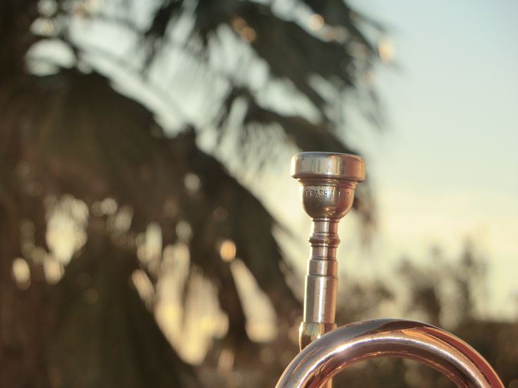 The music It's my live and the trumpet contribute