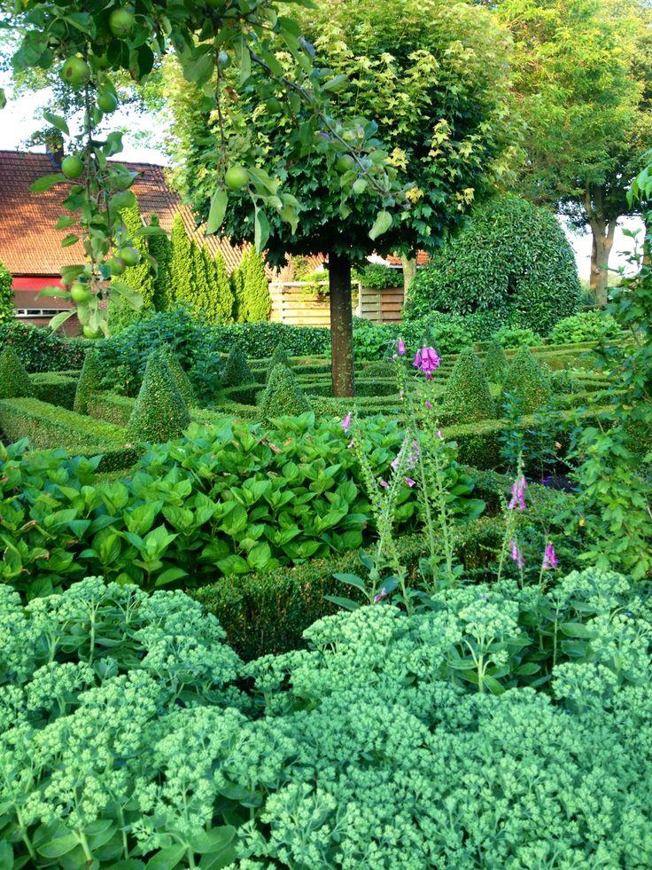 Garden - green green green