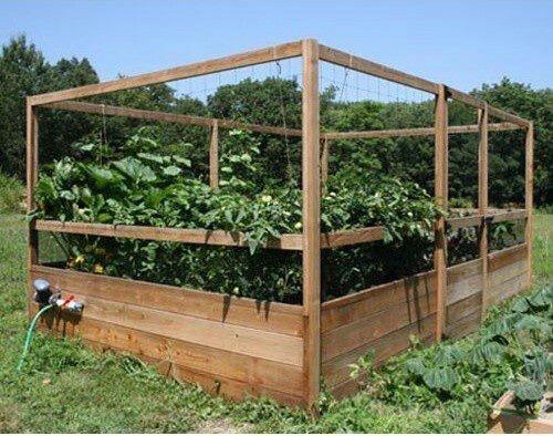 gardens to gro 8 x 12 ft deer proof vegetable garden kit do not use the gardens to gro 8 x 12 ft deer proof vegetable garden kit allows easy access to