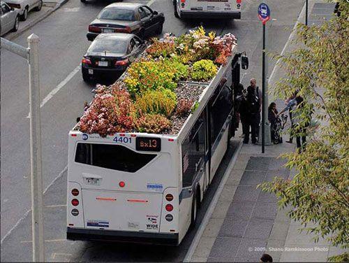"""Marco Antonio Castro Cosio, designer messicano residente a New York, ha avuto un'altra idea: trasformare i tetti dei bus circolanti in città in altrettanti """"giardini viaggianti"""