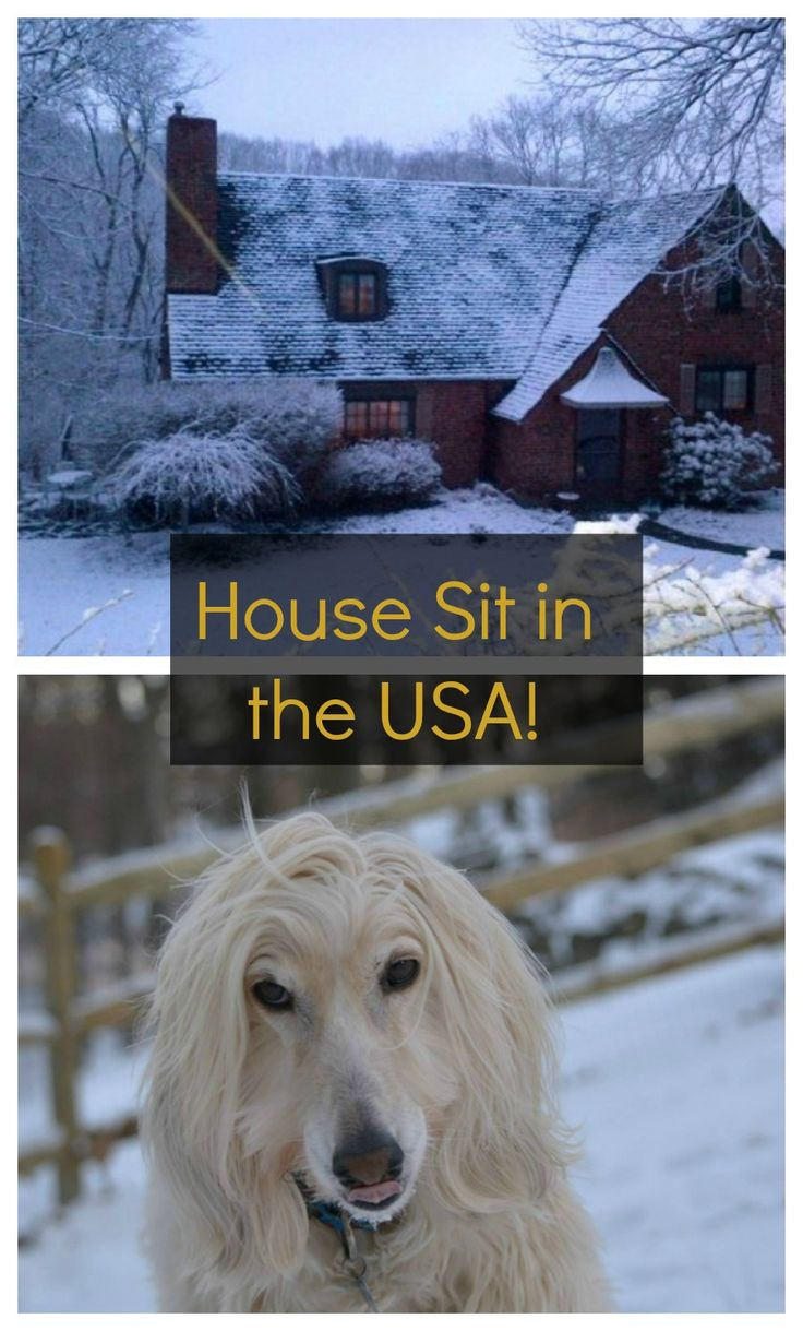 House Sit in #PA, #USA! find out more here: http://www.travellingweasels.com/2015/04/house-sitting-opportunities.html
