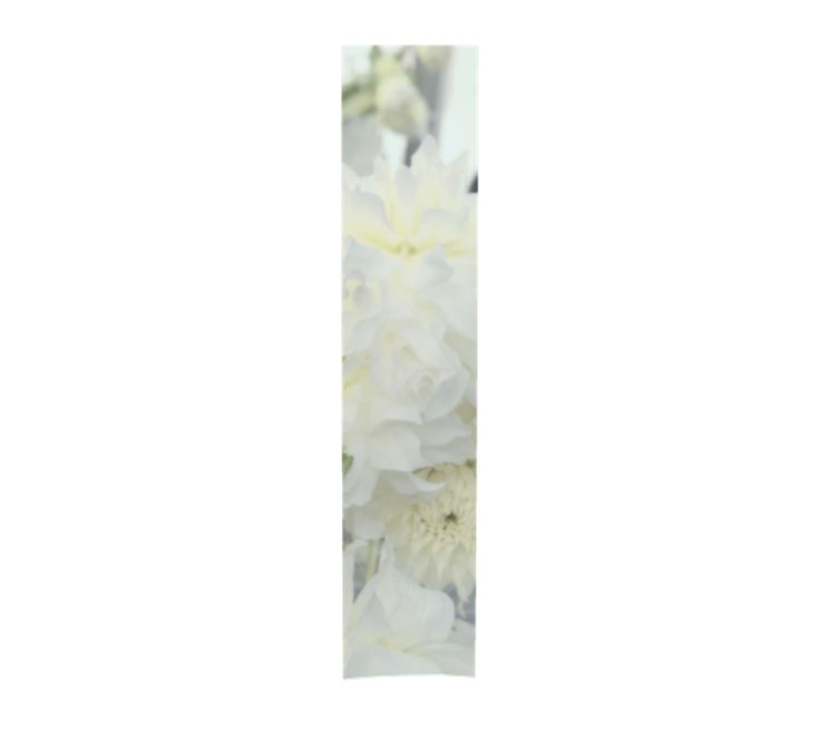 """""""Cream Peony"""" Special Occasion & Evening Shawls 