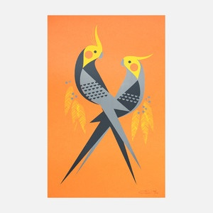 Love Birds Print 12.5x19 now featured on Fab.