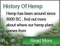 Hemp Products | SA Hemp Shop
