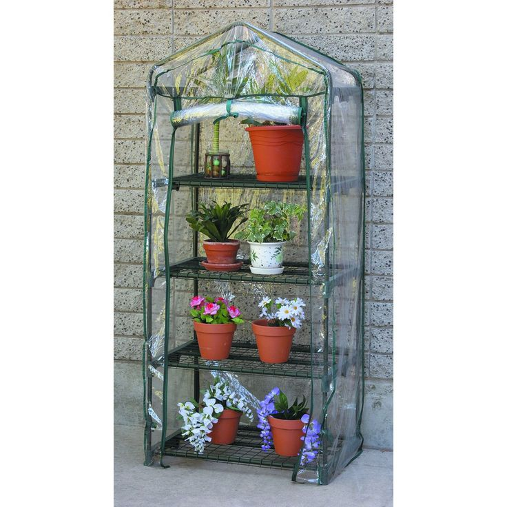 Deck Sized Greenhouse   Start Plants, And/or Keep A Quickie Lettuce Garden  In