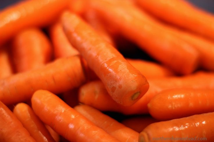 A great way to freeze carrots, no blanching needed. NorthernHomestead