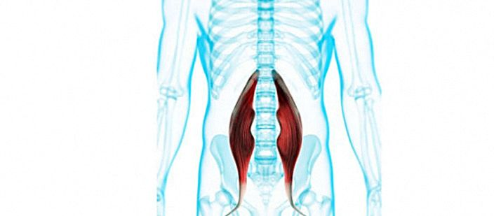 the psoas muscle is one of the largest muscles in the human body. Strengthening exercises for the psoas muscle can help to improve functionality and prevent back pain.