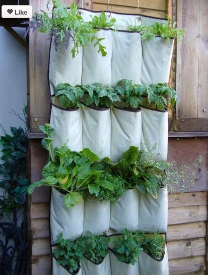 handy herb garden.Herbs Garden