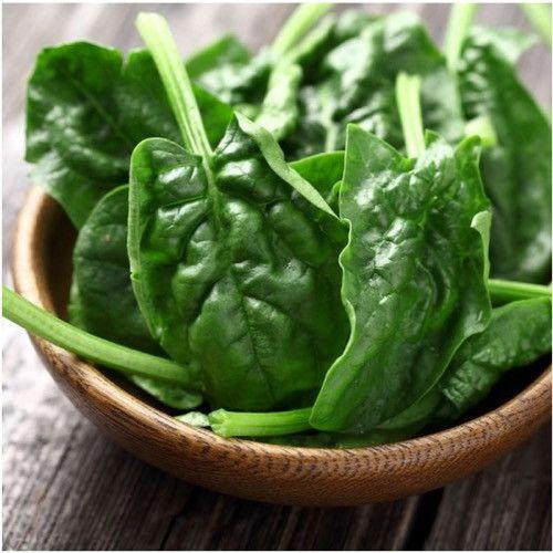 Bloomsdale Longstanding Spinach Seeds (Spinacia oleracea)