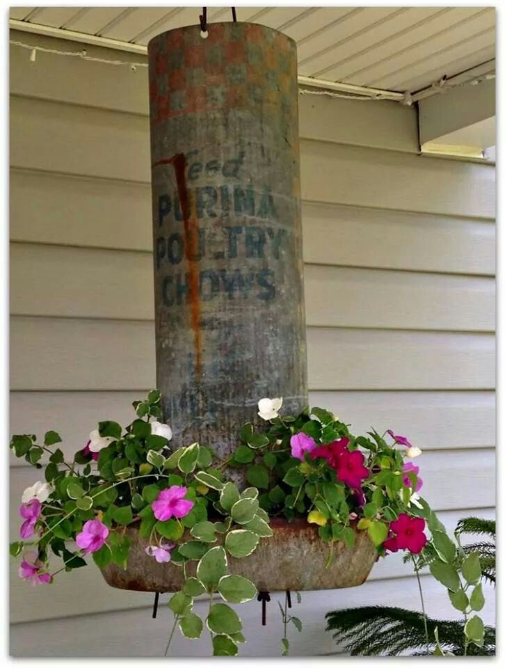 Old chicken feeder turned into a lovely hanging planter