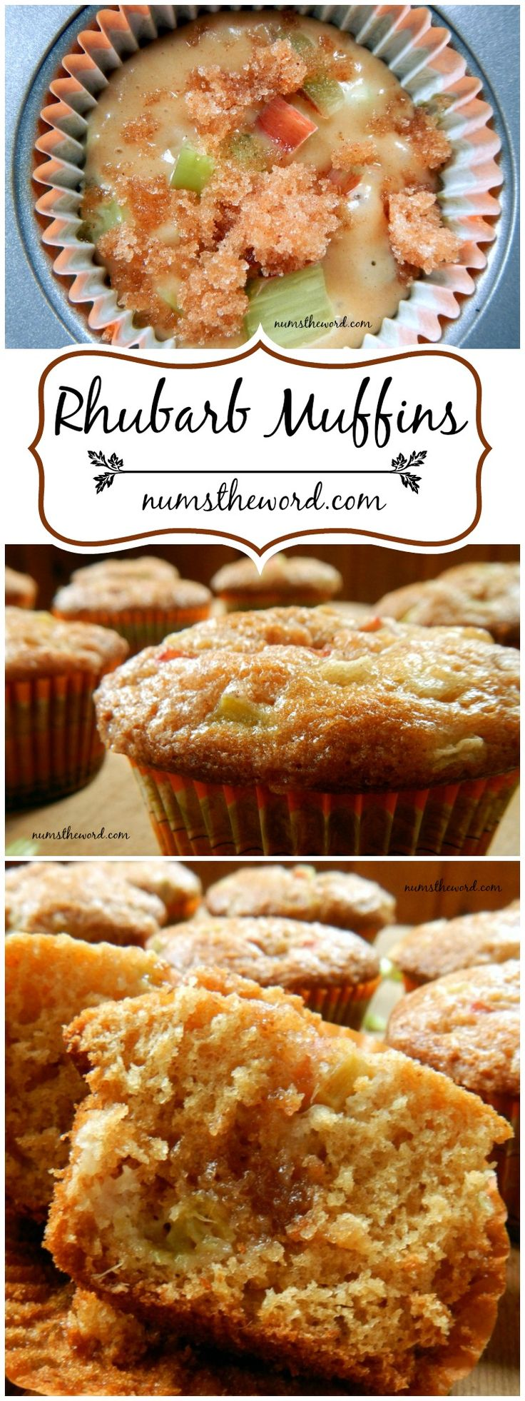Cinnamon Rhubarb Muffins - Don't let rhubarb scare you. Try these tasty and nonthreatening muffins. They taste like cinnamon sugar and have ZERO crunch to them! Perfect and tasty!