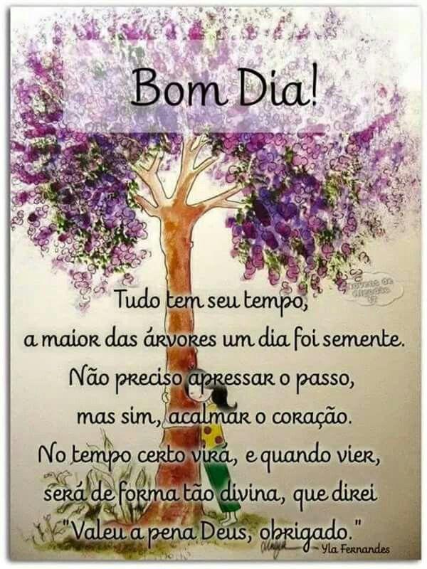 """✿⊱❥ """"Tudo tem seu tempo, a maior das árvores um dia foi semente. Não preciso apressar o passo, mas sim, acalmar o coração. No tempo certo virá, e quando vier, será de forma divina, que direi... """"Valeu a pena Deus, obrigado."""""""