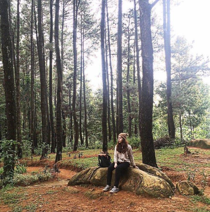Wisata Gunung Pancar Bogor Keren Loh.Kalau kalian dengar kata Bogor…