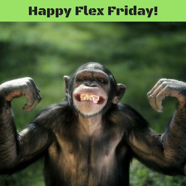 Happy Flex Friday from HomeFront Fitness!