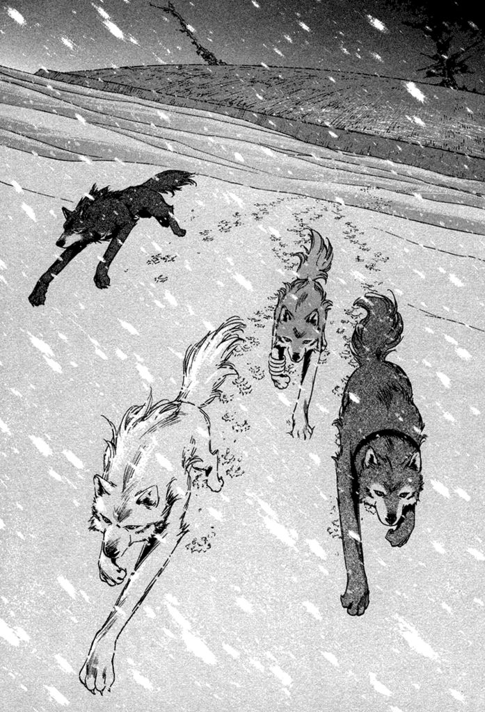 http://images5.fanpop.com/image/photos/26100000/Wolf-s-Rain-Manga-wolfs-rain-26131788-697-1024.png