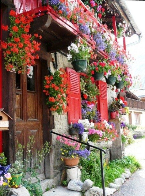 window gardening...Flower Planters, Little House, Colors, Dreams House, Flower Gardens, Windows, Small Spaces, Shutters, Hanging Baskets