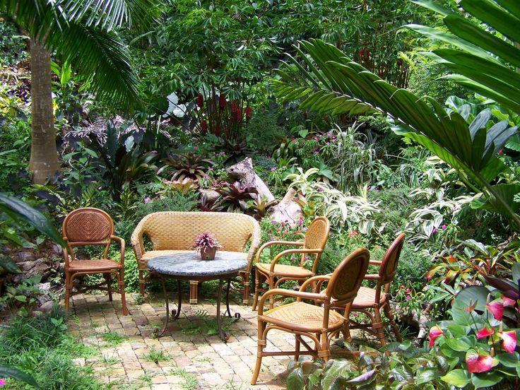 un giardino tropicale un masai e una lezione sulla depressione