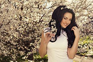 Обои Цветущие деревья Брюнетка Улыбка Девушки