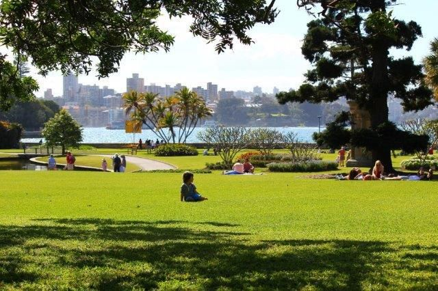 Magical lush landscapes, discover in Sydney, free places to visit, gardens, open space