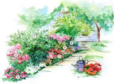 Пышная рабатка с лилиями